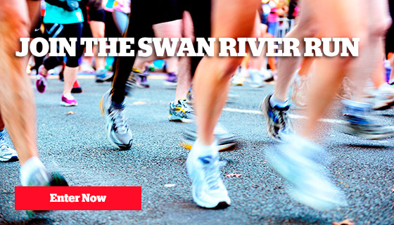 enter swan